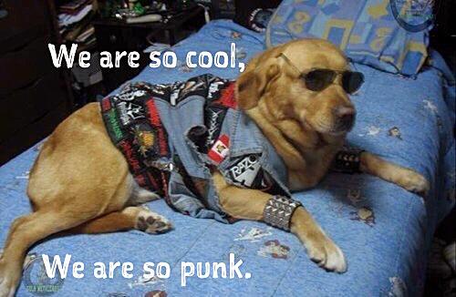 Cool Punk